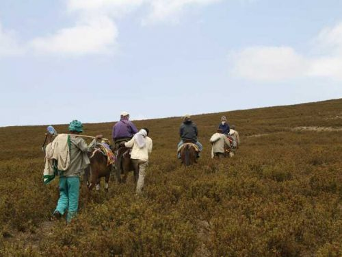 4 Days Simien Mountains National Park Trekking