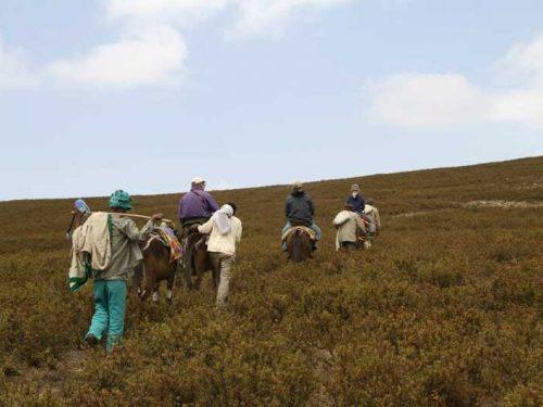 4 Days Simien Mountains National Park Trekking