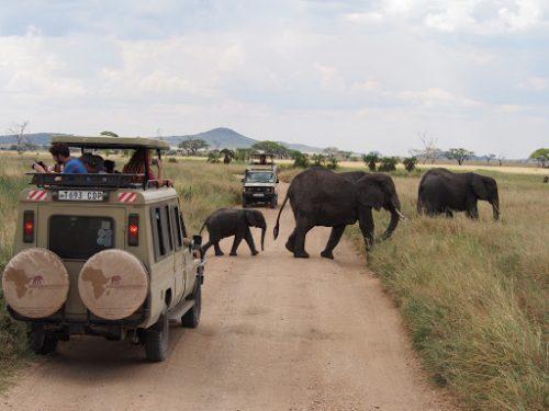 5 Days Serengeti National Park and Ngorongoro Crater