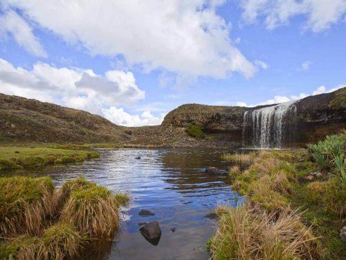 6 Days Bale Mountain National Park Trekking
