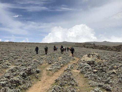7 Days Bale Mountain National Park Trekking