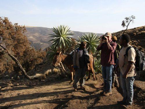 9 Days Bale Mountain National Park Trekking